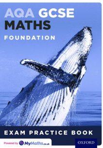 AQA GCSE Maths Foundation Exam Practice Book - Geoff Gibb