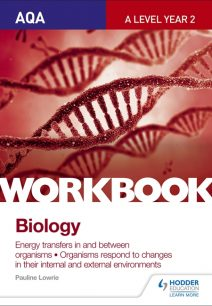 AQA A Level Year 2 Biology Workbook: Energy transfers in and between organisms; Organisms respond to changes in their internal and external environments - Pauline Lowrie