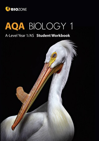 AQA Biology 1 A-Level Year 1/AS - Student Workbook -